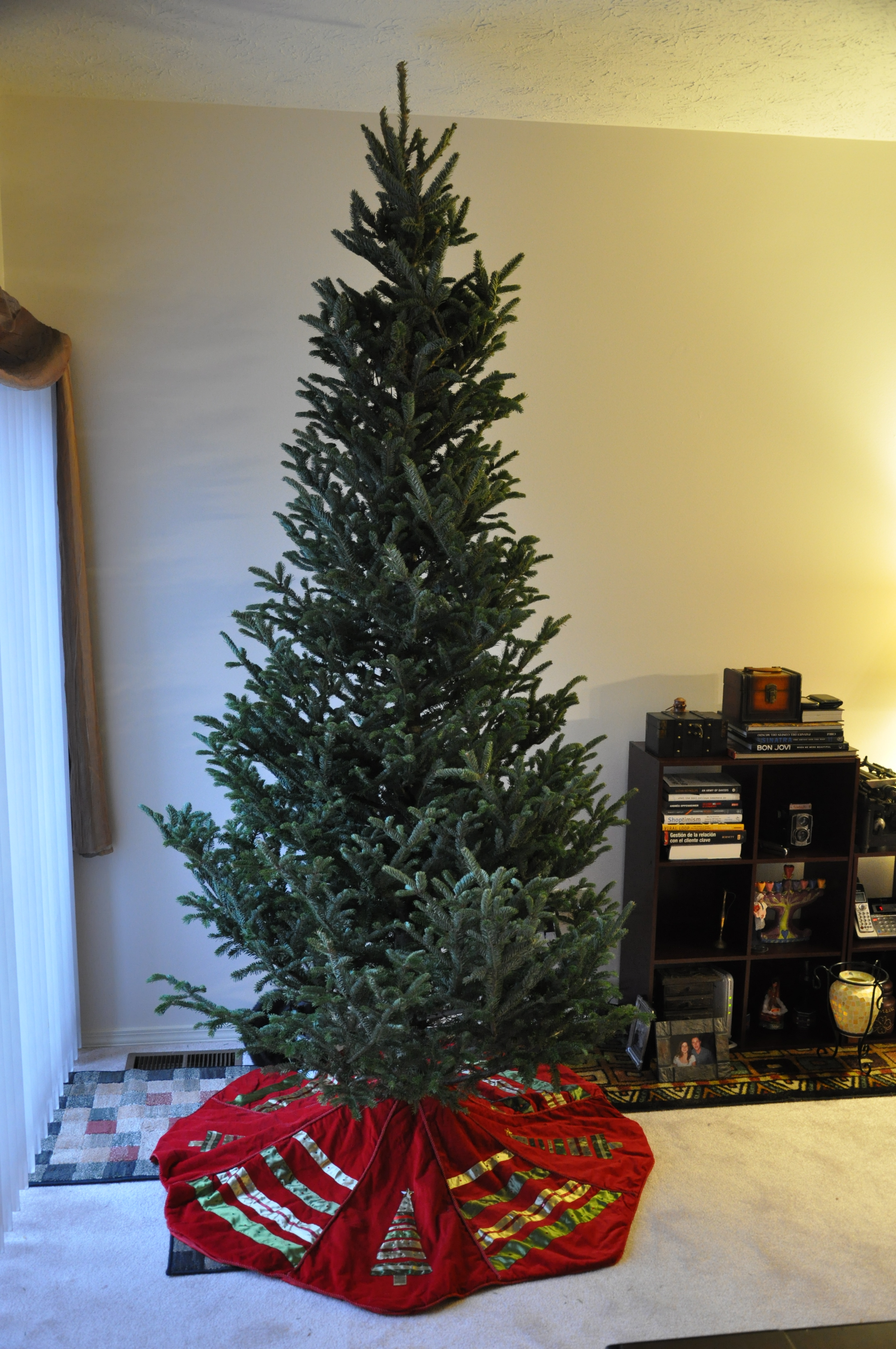 adrianas 10 foot christmas tree - 10 Foot Christmas Tree